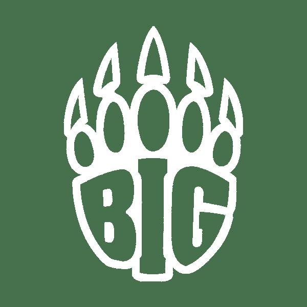 Big Esports Logo